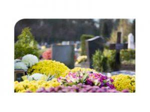 почистване и поддръжка на гробно място бургас